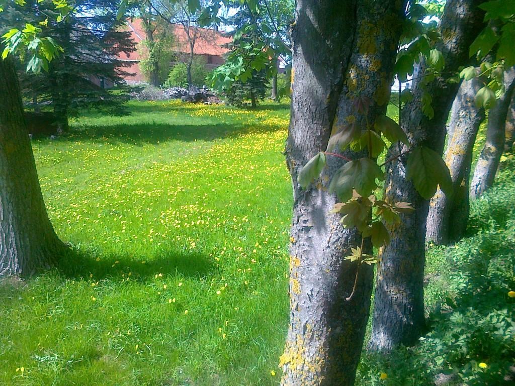 manoir ferme en Pologne vente de chateau